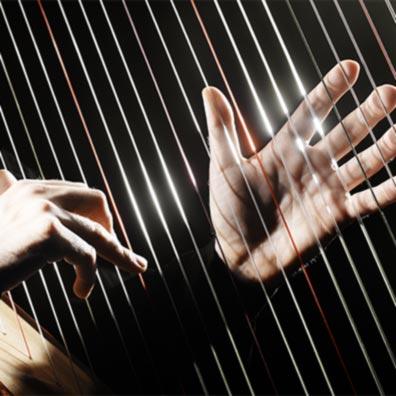 Classical Harp?